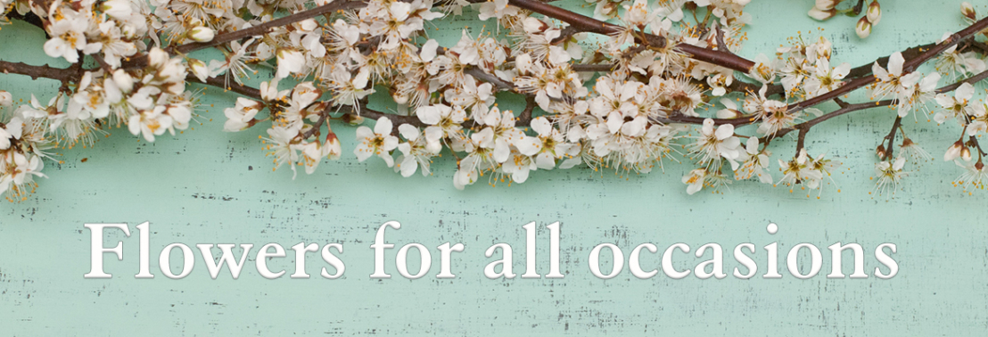 Banner-all occasions